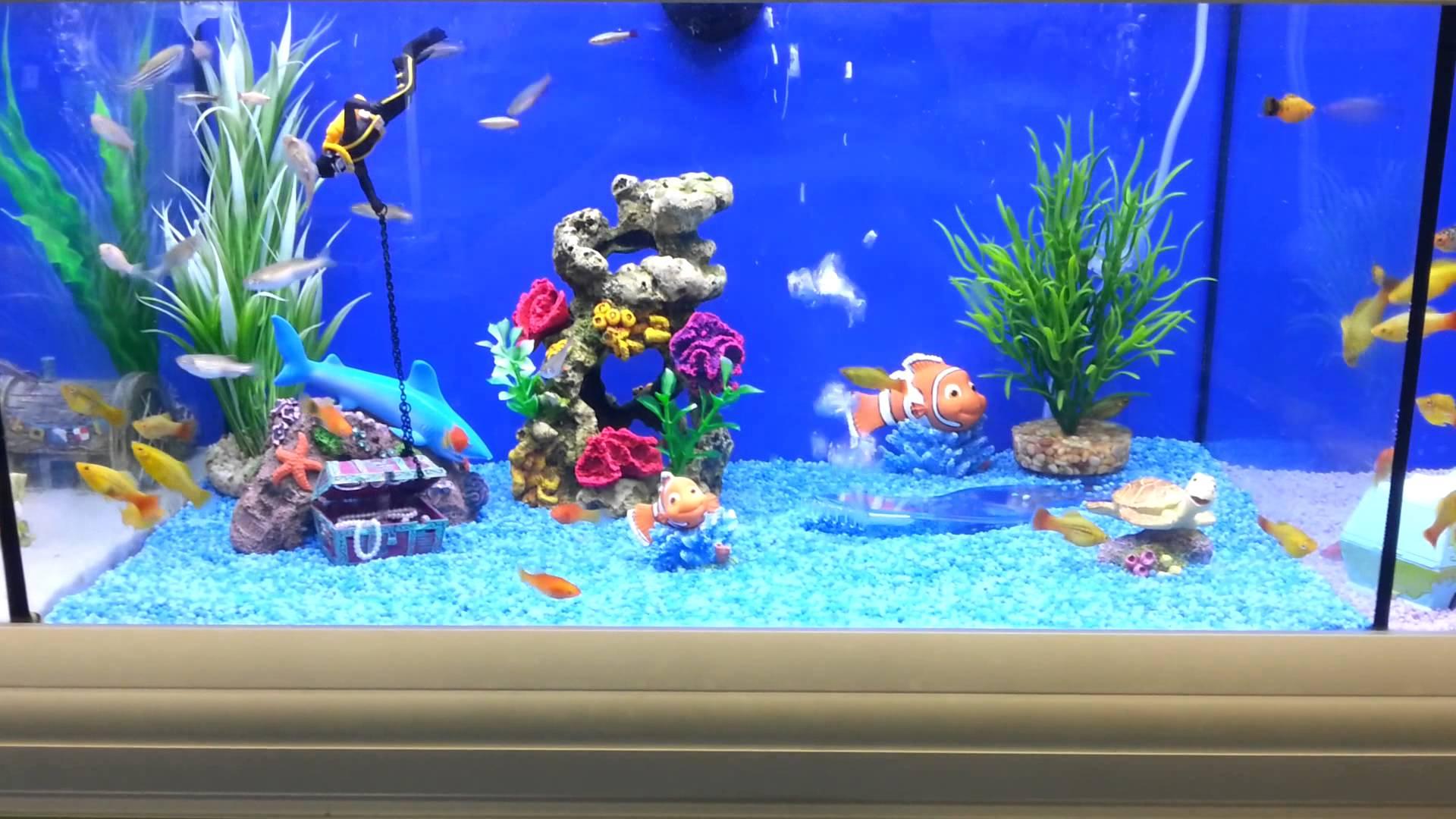 picture of colored aquarium gravel