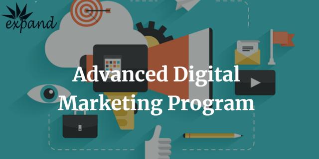 Advanced Digital Marketing Program