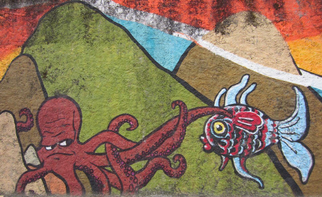 octopus mural a coruña spain