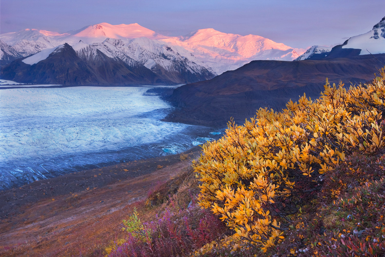 Fairbanks Northern Lights Tour