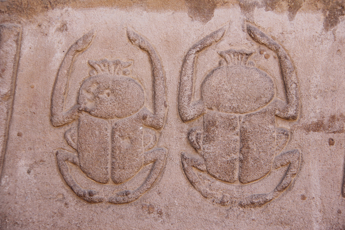 Egyptian Scarab Beetle Experience Ancient Egypt