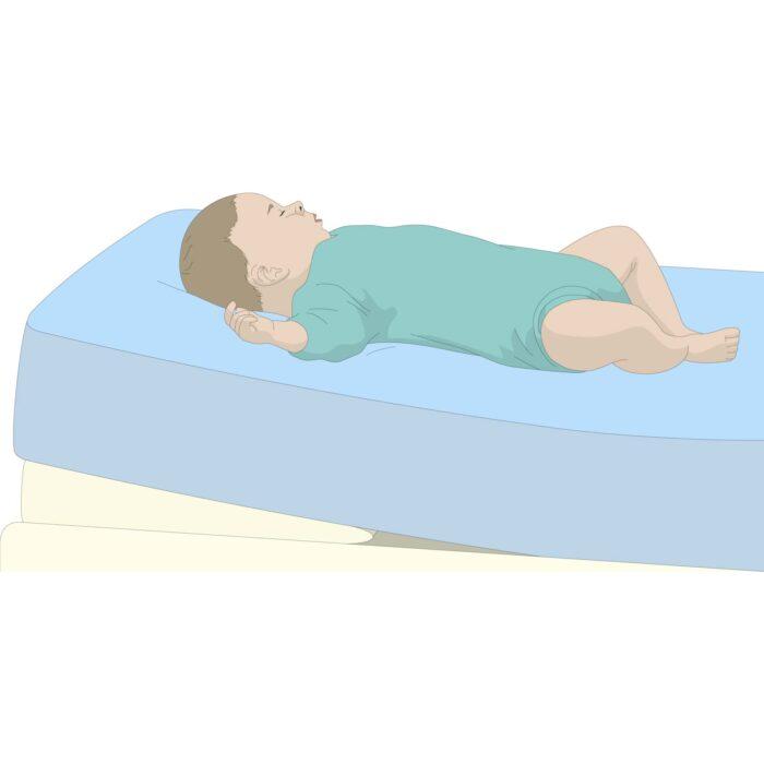 crib vs bassinet vs baby lounger what