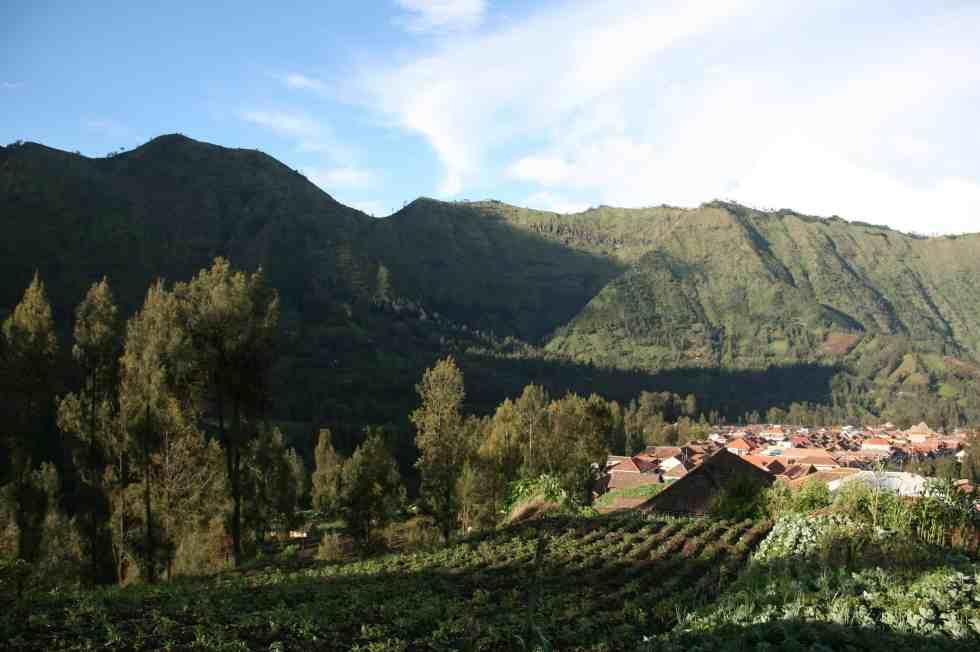 Views across Wonotoro Village