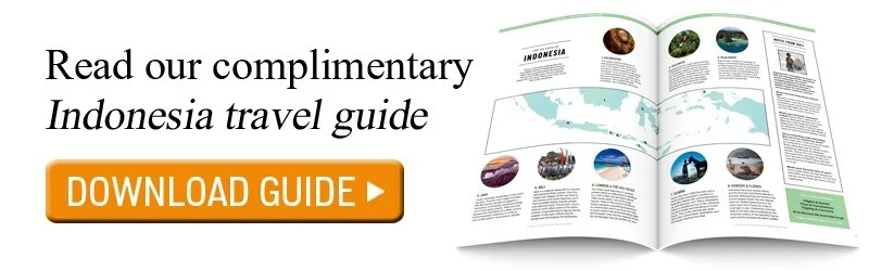 Read our complimentary Indonesia travel guide