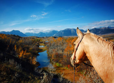 Experience Travel Guides Cowboy Trail
