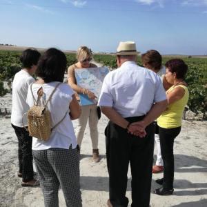 Experiencia cata de vinos en El Puerto de Santa María