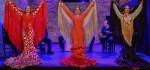 Bailaoras de flamenco en el tablao flamenco de puro arte flamenco jerez en Jerez de la Frontera