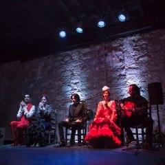 Grupo de flamenco actuando por la noche con puro arte flamenco jerez en jerez de la frontera