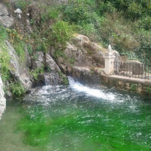 La Fuente del Río en Cabra