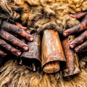 Los carneros de Tigaday