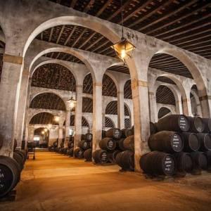 Degustación de vinos en Jerez de la Frontera