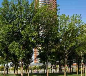 El parque Magallanes en Sevilla