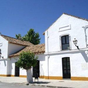 Centro Enogastronómico Olivino de Las Navas en Lucena