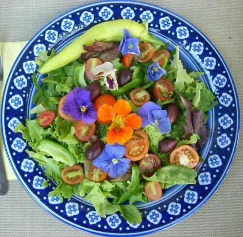 Loose Leaf Salad