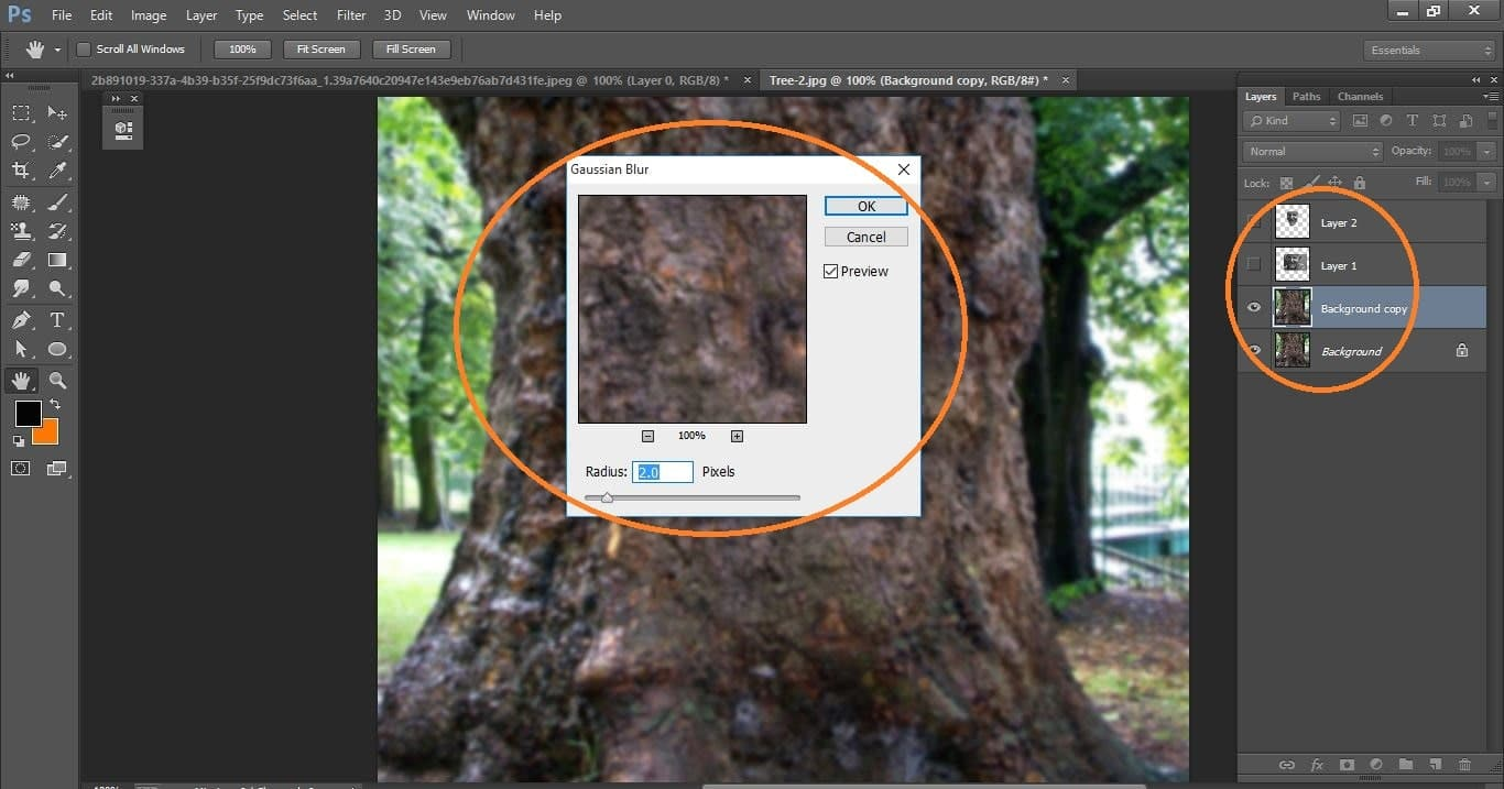 How to create Camouflage a Face onto Gnarly, TREE Bark - in Photoshop manipulation