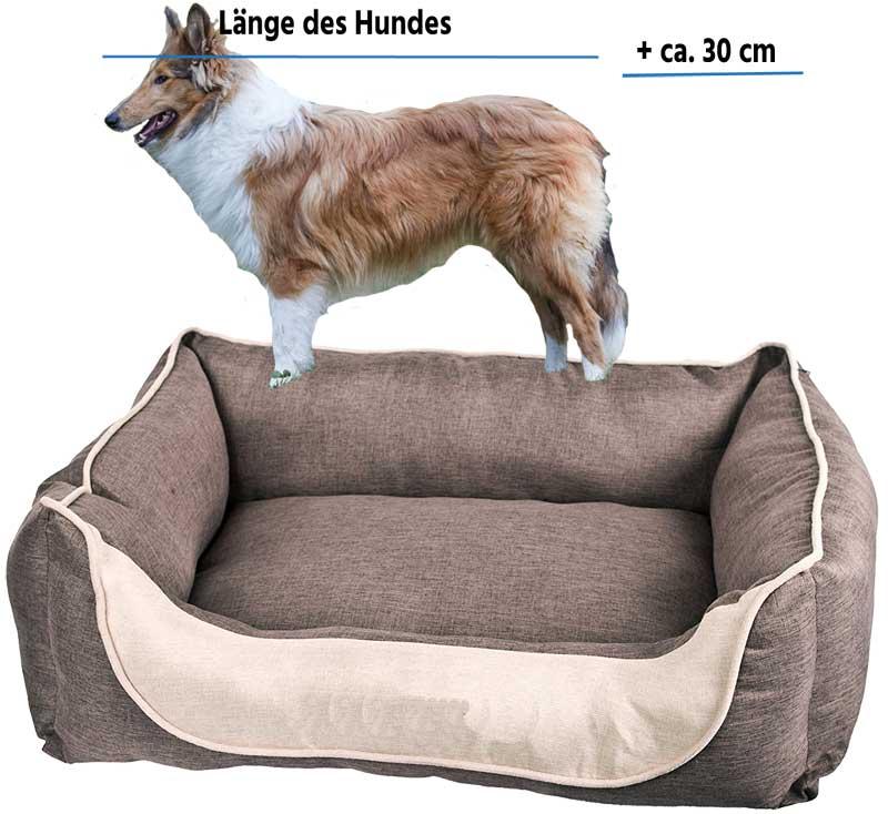 Länge des Hundebettes