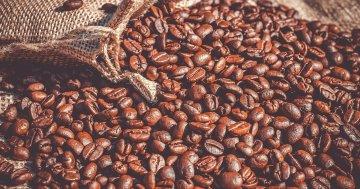 Die Geschichte des Kaffees