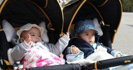 Geschwisterkinderwagen Test