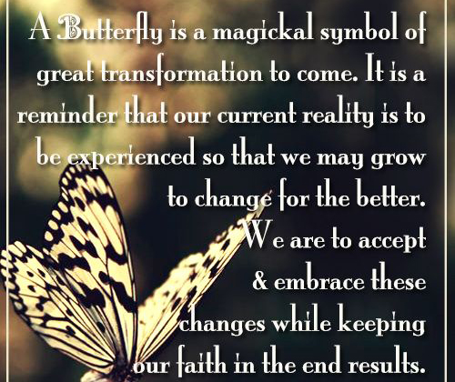 Butterfly As A Symbol Of Acceptance And Change