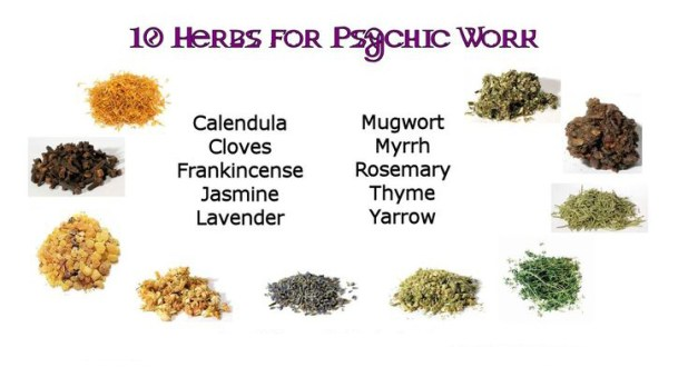 Herbs In Empowering Psychic Abilities