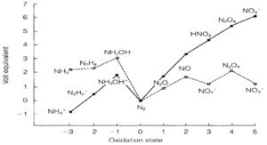Nitrogen p block element, Chemistry