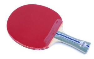 DHS A5002 Table Tennis Bat