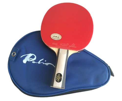 Palio Expert 2 Raquette de tennis de table et housse