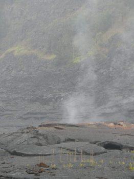 voyage-hawaii-Big Island Parc des volcans (116)
