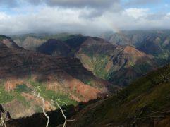 voyage-hawaii-Kauai-Waimea canyon (16)
