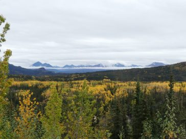 denali-national-park-75