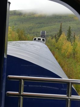 train-fairbanks-denali-17