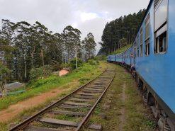 voyage-sri-lanka-train-nuwara-eliya-bandarawela-17