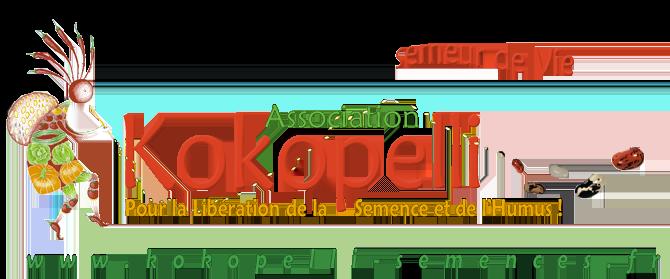 logo-kokopelli