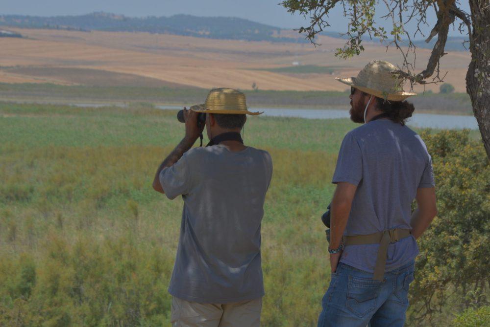 Observation de la biodiversité aviaire à l'aide d'une longue-vue