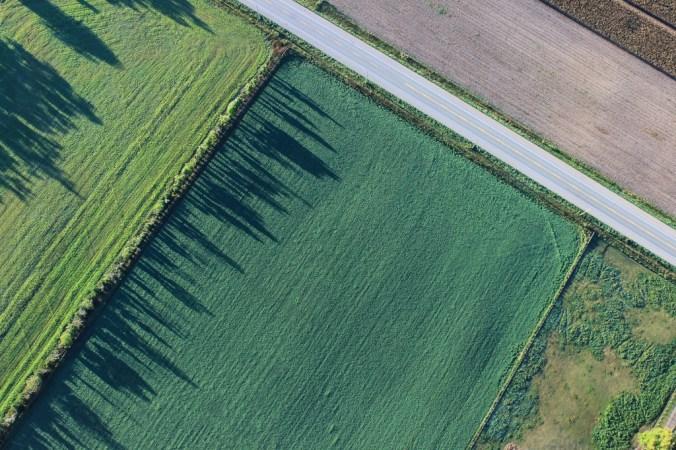 paysage agricole contenant des haies
