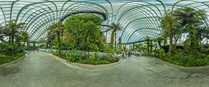 Gardens by The Bay, Cloud Forest Dome