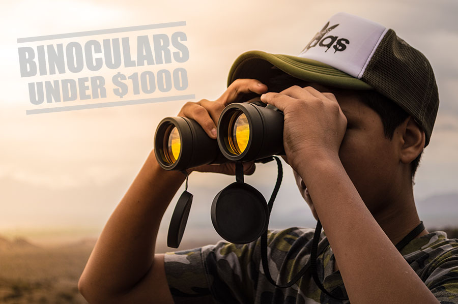 Best binoculars under 1000 - thumb