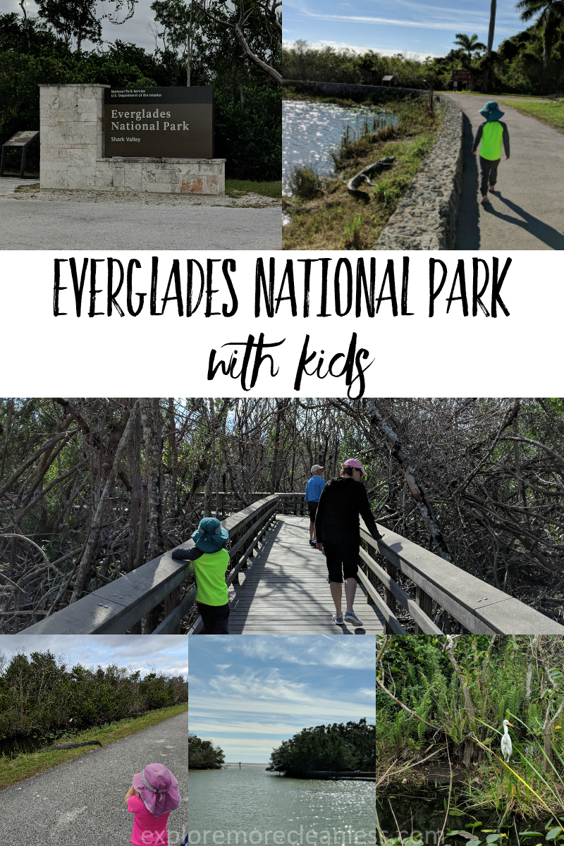 See why Everglades National Park is a fun spot to explore the United States with kids! Full details of our two day everglades itinerary full of wildlife spotting and lots of informational links for learning about the everglades. #worldschooling #florida #travel #nationalparks