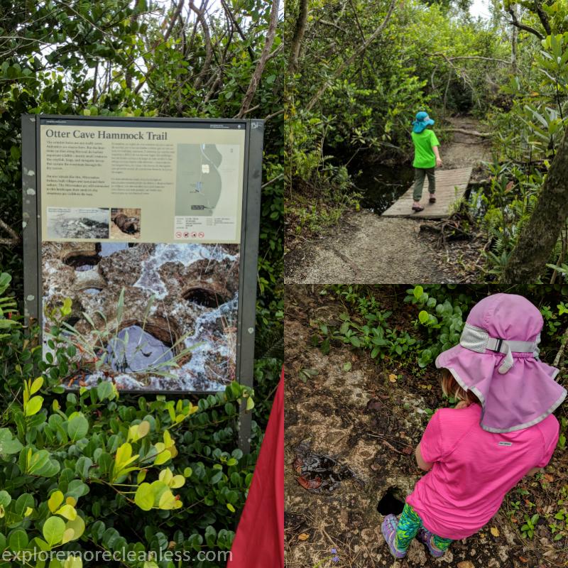 otter cave hammock trail everglades