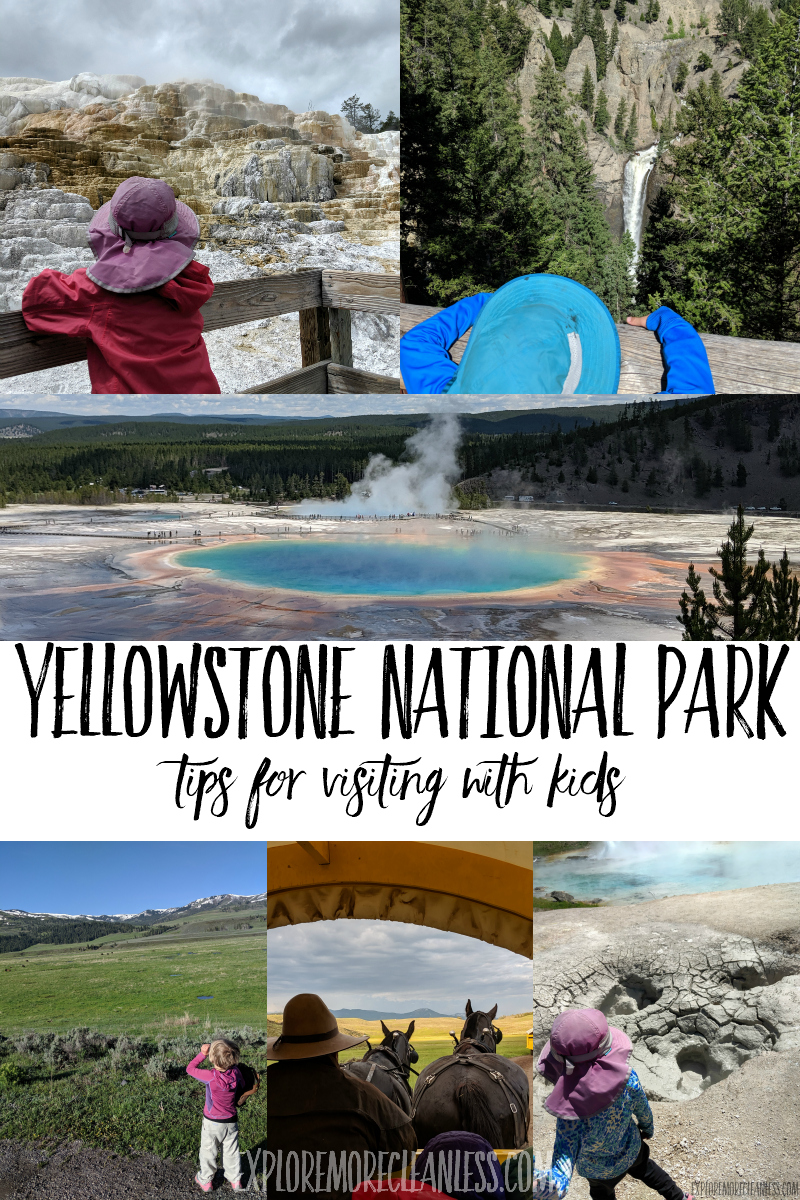 tips for family visit to yellowstone national park