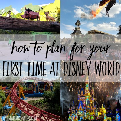 How to plan for your first time at Disney World