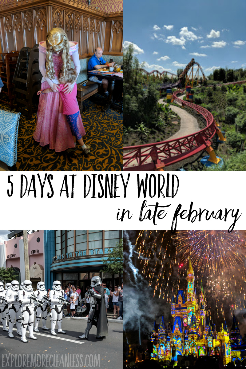 walt disney world itinerary 5 days february march