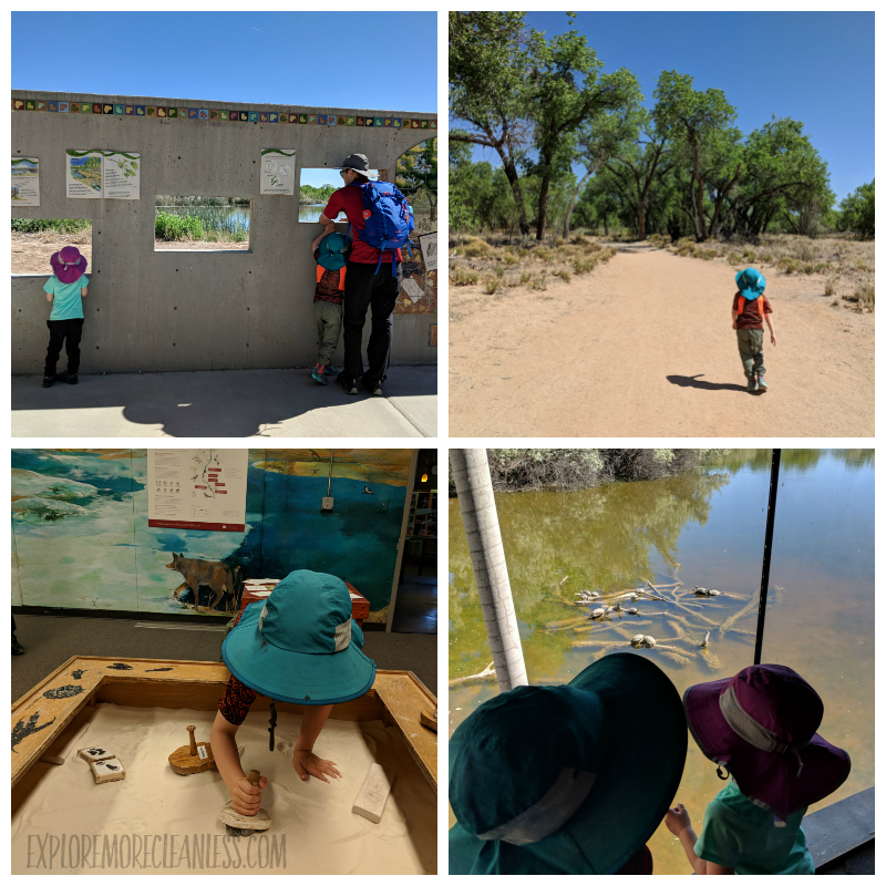 Rio Grande Nature Center