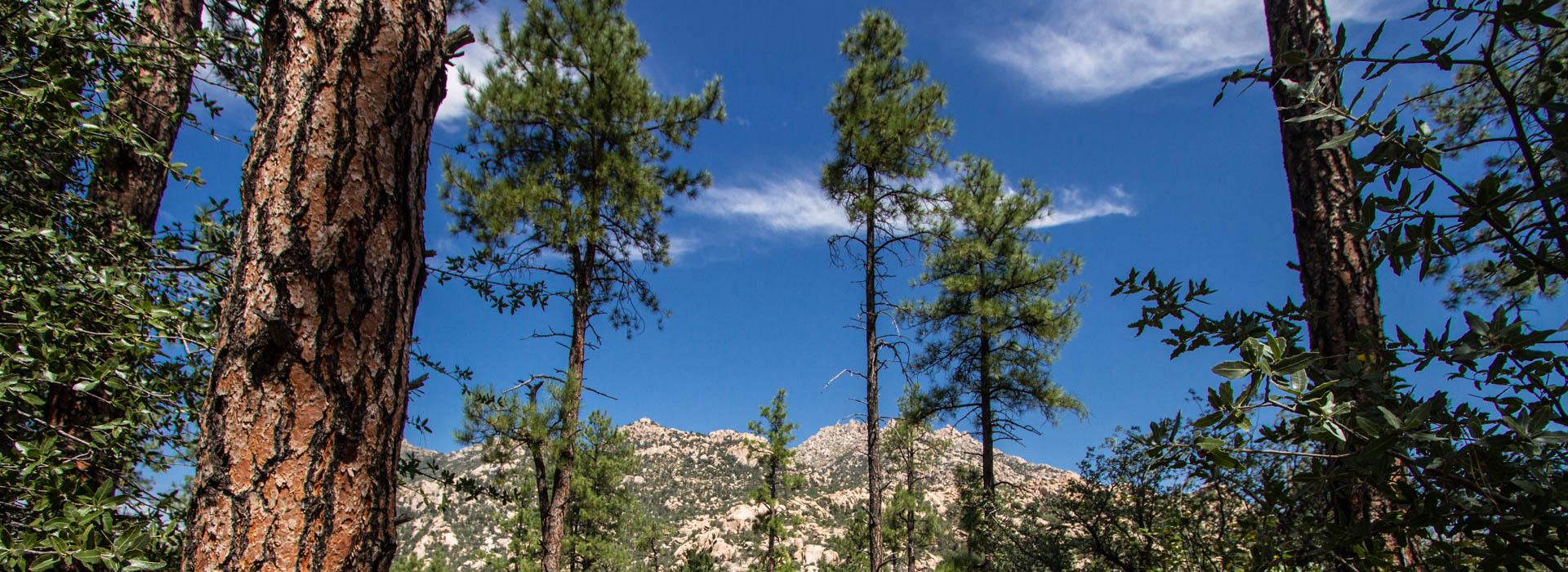 Granite Mountain at Granite Basin USFS Prescott Arizona Photographer Rich Charpentier