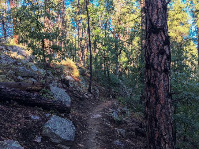 Hike in Prescott Arizona Circle Trail Goldwater Lake to White Spar Campground