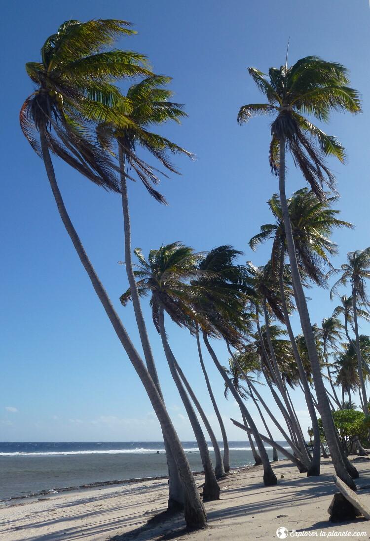 iles-visiter-polynesie-francaise-mer-tikehau