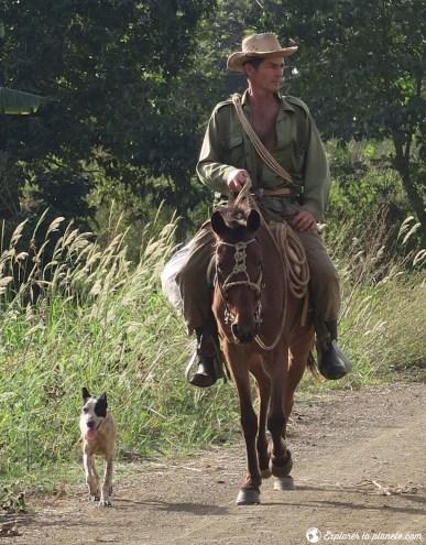 Cowboy cubain sur son cheval avec son chien à Vinales.