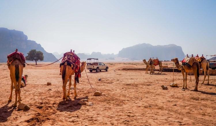 Campement Wadi Rum en Jordanie