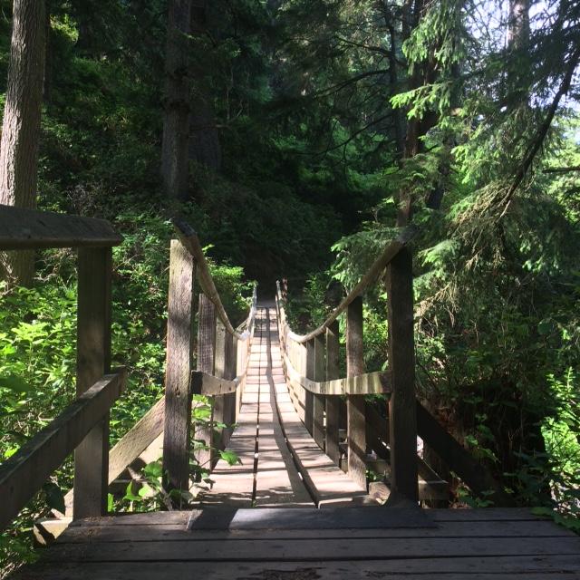Ecola_State_Park_Bridge