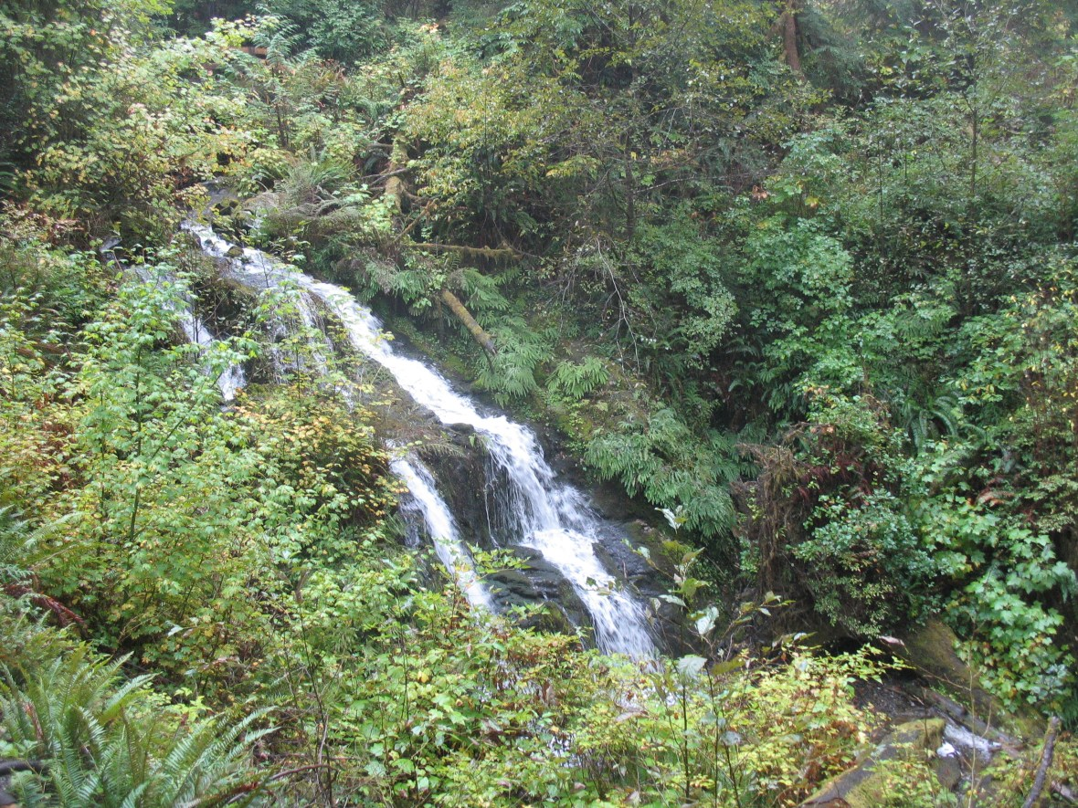 quinault-waterfall